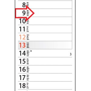 Smalle kalender 2019 - Strookkalender Midi