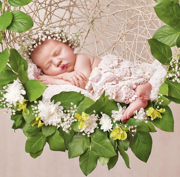 Muurkalender Babies 2020 Juni