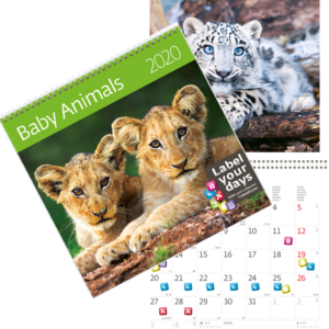 Muurkalender Babydieren 2020