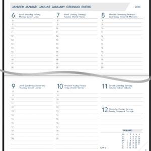 Agenda novoplan 2020 Gebonden Biege