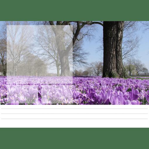Kantoorkalender Silent Moments 2021 Februari