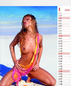 Kalender pin-up Tropical Girls 2021 Januari
