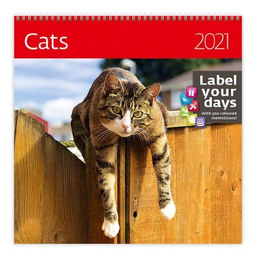Muurkalender Cats 30x30 2021