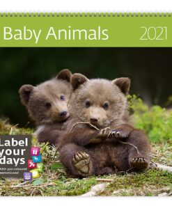 Muurkalender 30x30 Baby Animals 2021