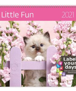 Muurkalender 30x30 Little Fun 2021