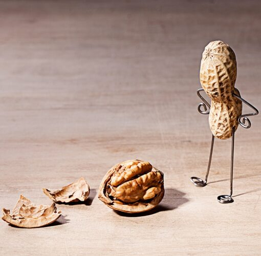 Muurkalender 30x30 Funny Nuts 2021 Februari