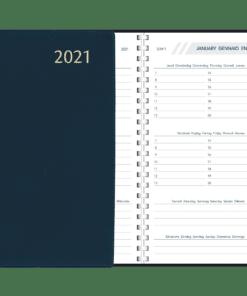 Agenda Visuplan spiraal Blauw 2021