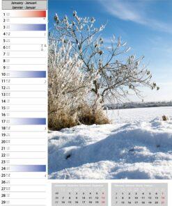 Muurkalender Sunny Days 2021 Januari