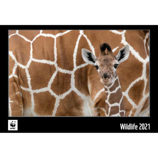 WWF kalender Wildlife 2021
