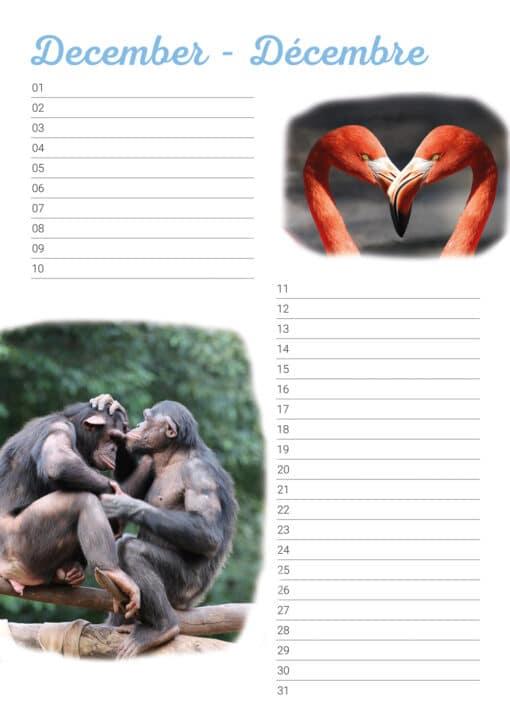 Verjaardagskalender 'Animals in Love' December