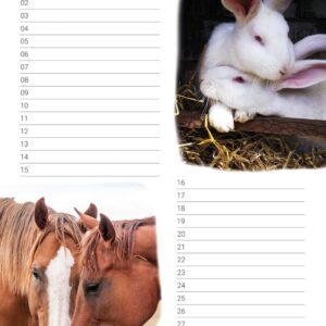 Verjaardagskalender 'Animals in Love' November