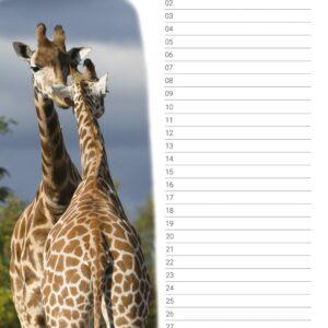 Verjaardagskalender 'Animals in Love' Oktober