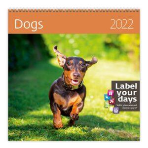 Muurkalender Dogs 2022