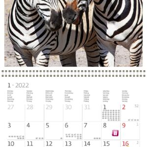 Muurkalender Animal Friends 2022 Januari
