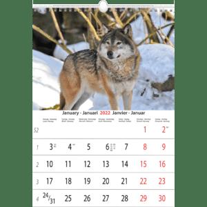Muurkalender Animals 2022 Januari